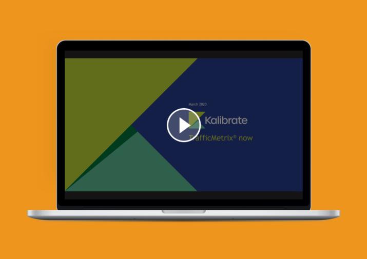 TrafficMetrix video understanding traffic counts